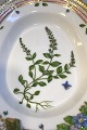 Royal Copenhagen Flora Danica Oval Assiette No20/3540
